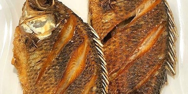GRILLED FISH OR FRIED FISH